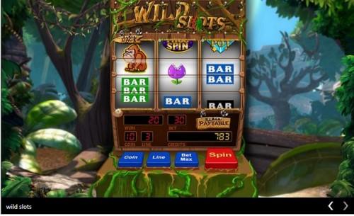 ae slot machine.JPG