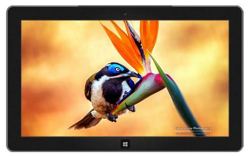 Nuovi temi per il mondo windows 8.1, e uno sguardo dietro le quinte al progetto