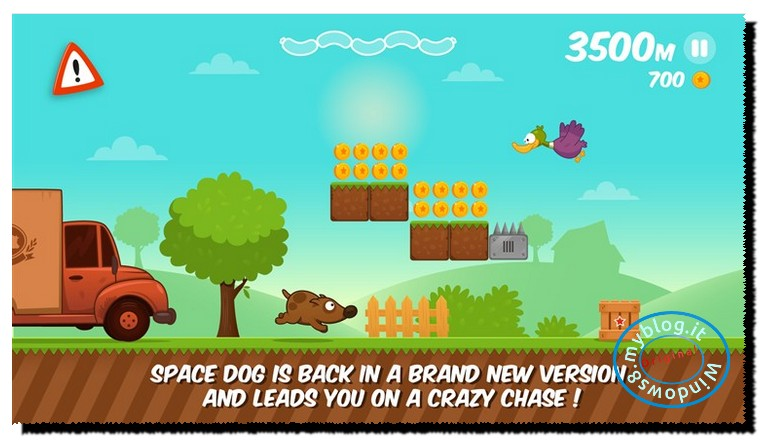 space dog run1